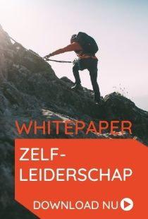 Whitepaper zelfleiderschap