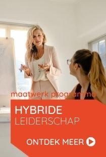 Vds training consultants maatwerk programma hybride leiderschap
