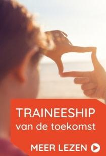 Traineeship 3.0 pagina – sidebar widget 1