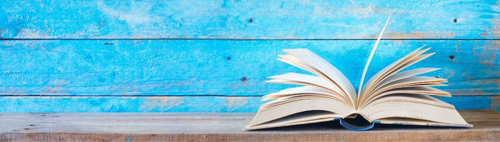 Vds training consultants blog voorwoord multipliers boek nederlands