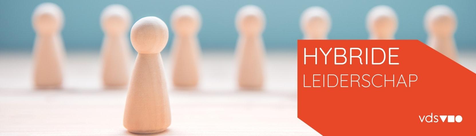 Vds training consultants programma hybride leiderschap