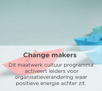 Vds training consultants change makers mobile