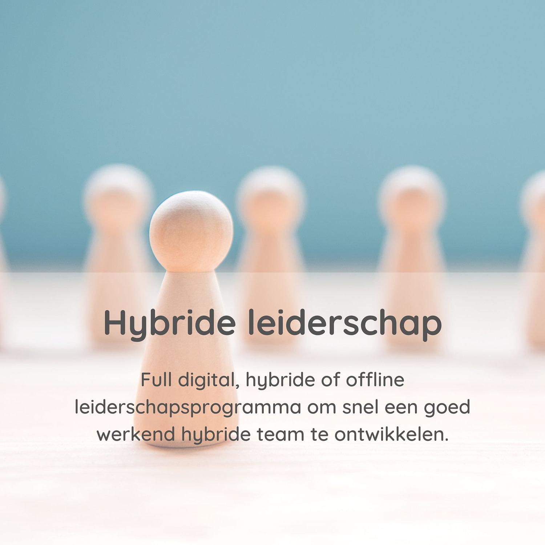 Vds hybride leiderschap